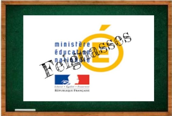 logo-feignasses_19535920_d605bbc4b2fcc1d5fd7619ee440d063cbc6c3a5a